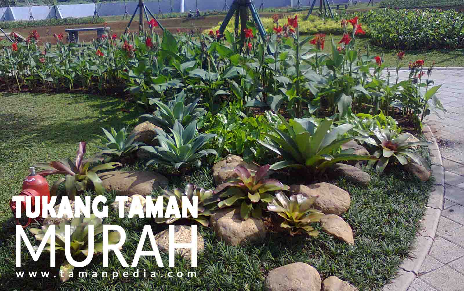 Jasa Tukang Pembuat Taman Profesional | Tukang Taman Rumah dan Kantor Harga Murah