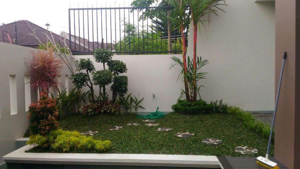 Tukang Taman BSD City Serpong - Termurah dan Bergaransi